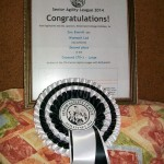 Iris and Laddie 2nd place in the Agility Net Diamond over 70's league for 2014 with 265 Points
