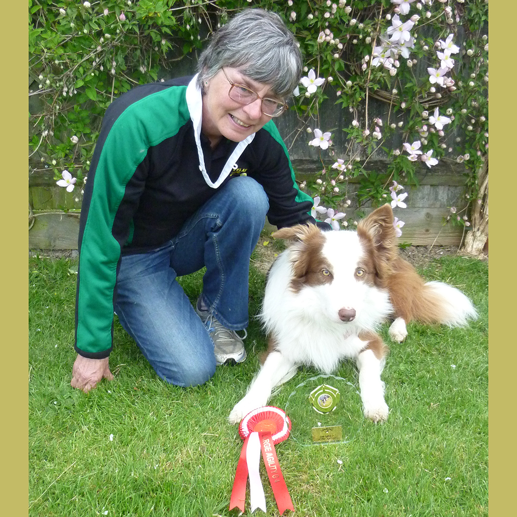 Quiz won G4 Agility today at Downland show 25-04-2015